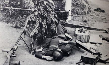 La 1ère Division des Grenadiers Polonais